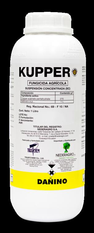 KUPPER-1