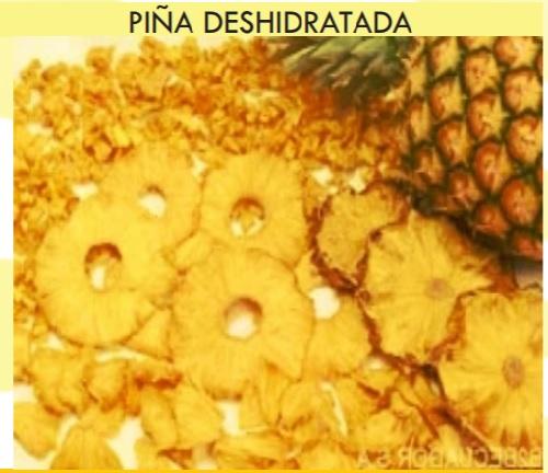 PINA-1